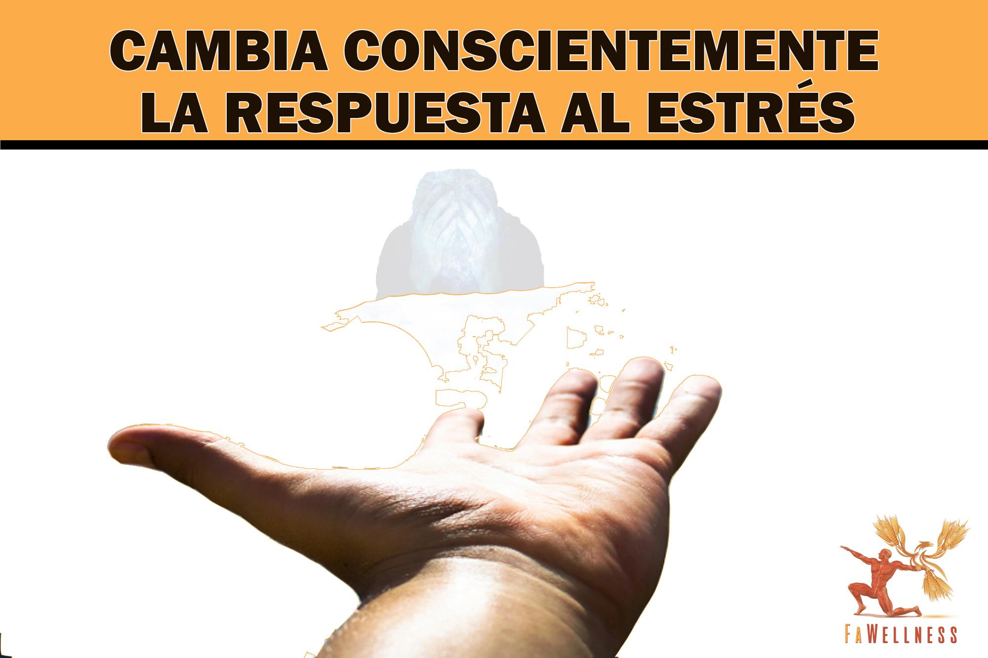 imagen blog FaWellness | TÉCNICAS PARA CAMBIAR CONSCIENTE MENTE LA RESPUESTA AL ESTRÉS GENERANDO UN ESTADO DE CALMA, SEGURIDAD Y REPOSICIÓN DE ENERGÍA.
