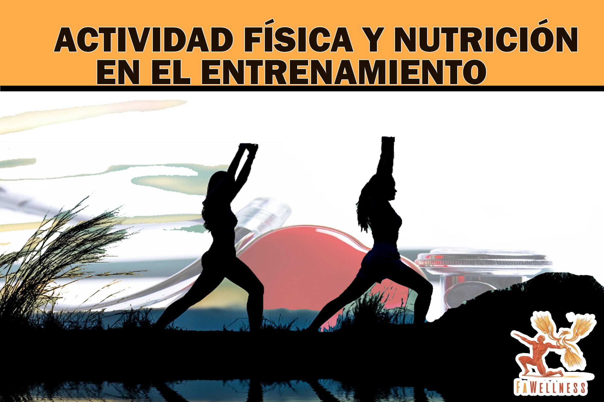 imagen blog FaWellness | VENTAJAS DE LA ACTIVIDAD FÍSICA Y QUÉ PAPEL JUEGA LA NUTRICIÓN EN LOS PROGRAMAS DE ENTRENAMIENTO